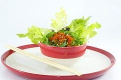 Insalata dell'alga in piatto Fotografia Stock Libera da Diritti