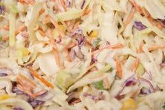 Insalata dell'insalata di cavoli Fotografie Stock