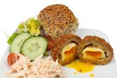 Insalata dell'uovo sodo/carne per salsiccia Fotografie Stock Libere da Diritti