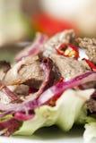 Insalata della carne Fotografia Stock Libera da Diritti