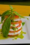 Insalata della mozzarella Fotografia Stock