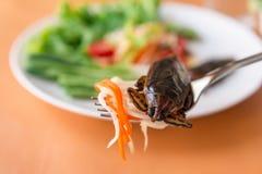 Insalata della papaia - insalata verde tailandese della papaia Immagini Stock Libere da Diritti