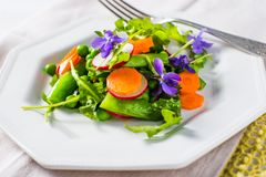 Insalata della primavera con i piselli e le carote Immagine Stock Libera da Diritti