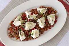 Insalata della quinoa con il formaggio della mozzarella del bufalo immagini stock libere da diritti