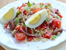 Insalata della quinoa e dell'uovo Fotografia Stock
