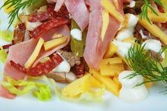 Insalata della salsiccia Immagini Stock
