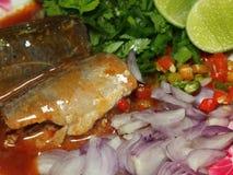 Insalata della sardina Fotografia Stock Libera da Diritti