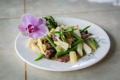 Insalata della verdura e della carne Fotografie Stock