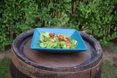 Insalata della verdura fresca, alimento sano, pomodori e foglie dell'insalata Insalata di pollo sana con la verdura fresca Fotografie Stock