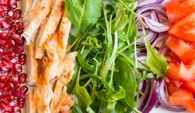 Insalata della verdura fresca con il rucola fotografia stock libera da diritti