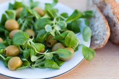 Insalata delle olive Fotografia Stock
