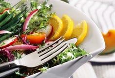 Insalata delle verdure immagine stock