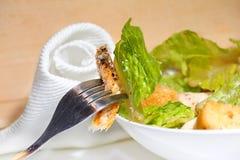 Insalata di Caesar del pollo Immagine Stock Libera da Diritti