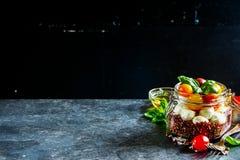 Insalata di Caprese con la quinoa Fotografia Stock Libera da Diritti