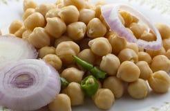 Insalata di Chick Peas con la cipolla ed i peperoncini rossi Fotografia Stock