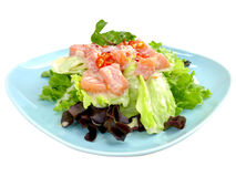 Insalata di color salmone in piatto Fotografia Stock