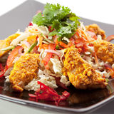 Insalata di Korma del pollo Immagine Stock