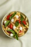 Insalata di pasta con i pomodori ciliegia e le foglie del basilico fotografia stock libera da diritti