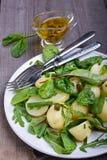 Insalata di patata con i fagiolini Immagine Stock Libera da Diritti