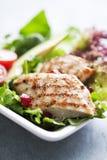 Insalata di pollo Fotografia Stock