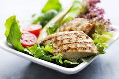 Insalata di pollo Fotografie Stock Libere da Diritti