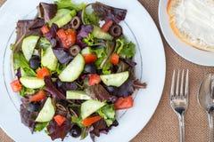 Insalata di pollo con l'avocado, i verdi misti, i cetrioli, i pomodori e le olive Fotografia Stock