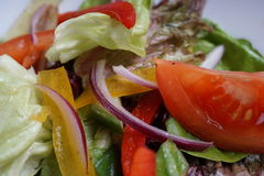 Insalata di verdure immagine stock libera da diritti
