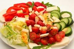 Insalata di verdure con formaggio Fotografie Stock Libere da Diritti