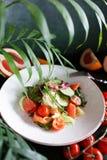 Insalata di verdure con il pompelmo ed il salmone Immagini Stock Libere da Diritti