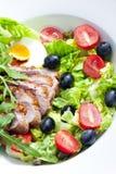 Insalata di verdure con il seno di anatra fritto Immagini Stock Libere da Diritti