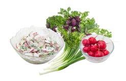 Insalata di verdure del ravanello rosso con la cipolla verde e la pianta Fotografia Stock Libera da Diritti