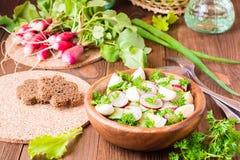 Insalata di verdure della molla deliziosa dal cetriolo, dal ravanello e dall'uovo Fotografia Stock Libera da Diritti