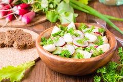 Insalata di verdure della molla deliziosa dal cetriolo, dal ravanello e dall'uovo Fotografie Stock Libere da Diritti