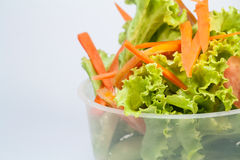 Insalata di verdure mista Immagini Stock