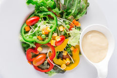 Insalata di verdure organica fresca Fotografia Stock Libera da Diritti