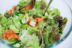 Insalata di verdure in una ciotola Fotografia Stock Libera da Diritti