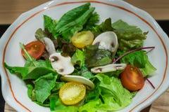 Insalata di verdure verde sana con il fungo ed i pomodori Fotografie Stock