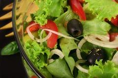 Insalata dietetica Immagini Stock Libere da Diritti