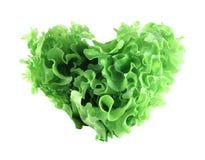Insalata a forma di della lattuga del cuore Fotografia Stock Libera da Diritti