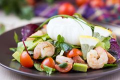 Insalata fresca con i gamberetti, pomodori, erbe, avocado, uovo affogato fotografia stock