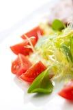 Insalata fresca con i pomodori Immagini Stock
