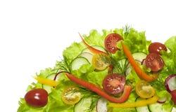 Insalata fresca con i ravanelli, i pomodori ciliegia ed i cetrioli Fotografie Stock