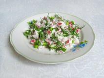 Insalata fresca con il ravanello ed i verdi Fotografia Stock