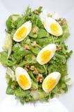 Insalata fresca con le uova Immagini Stock Libere da Diritti