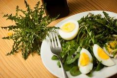 Insalata fresca del dente di leone di verde della molla con le uova su un primo piano del piatto Fotografie Stock Libere da Diritti