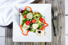 Insalata fresca del giardino sul piatto bianco Fotografia Stock