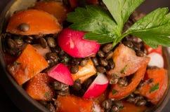 Insalata fresca del ravanello con prezzemolo italiano verde Fotografie Stock Libere da Diritti