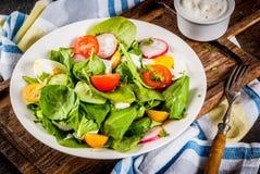 Insalata fresca della verdura della sorgente Immagine Stock