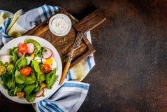 Insalata fresca della verdura della sorgente Fotografia Stock