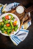 Insalata fresca della verdura della sorgente Fotografie Stock Libere da Diritti